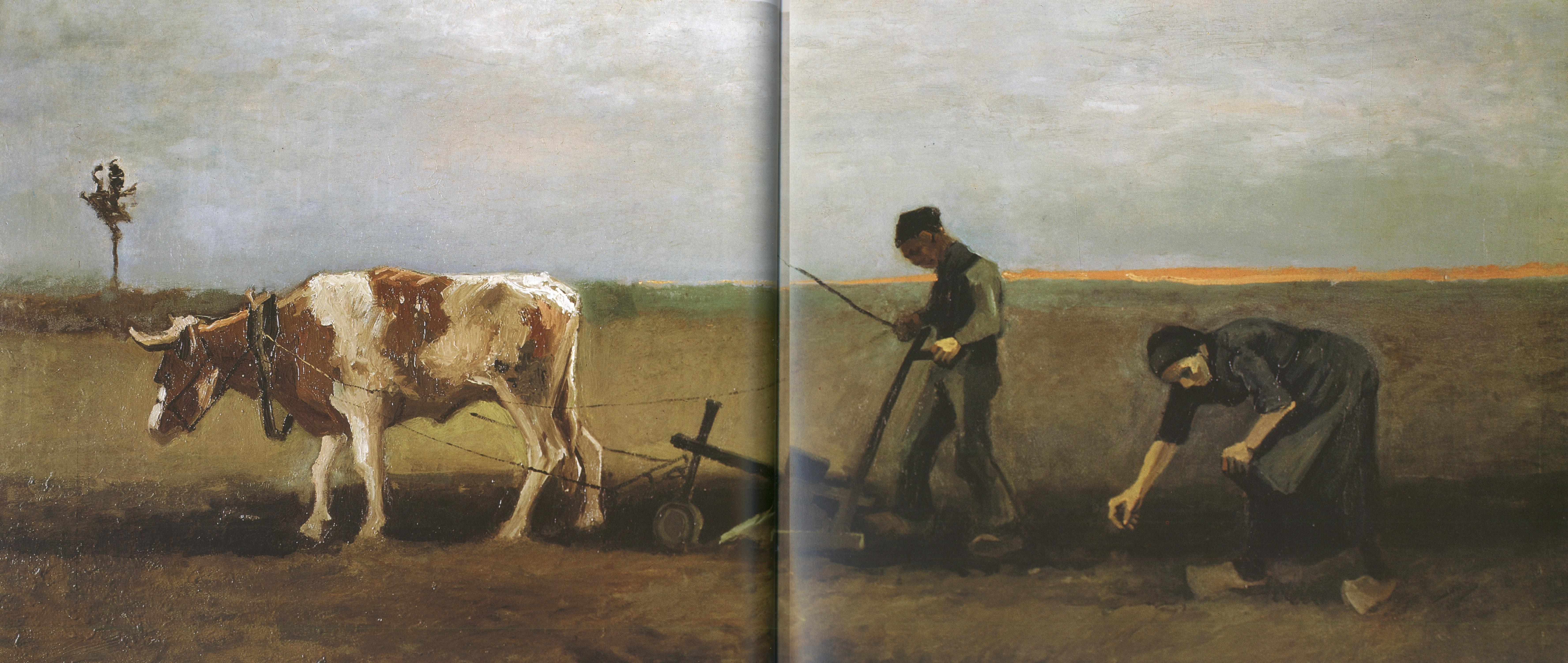 Vincent van Gogh Collection 800 Artworks • Image Album