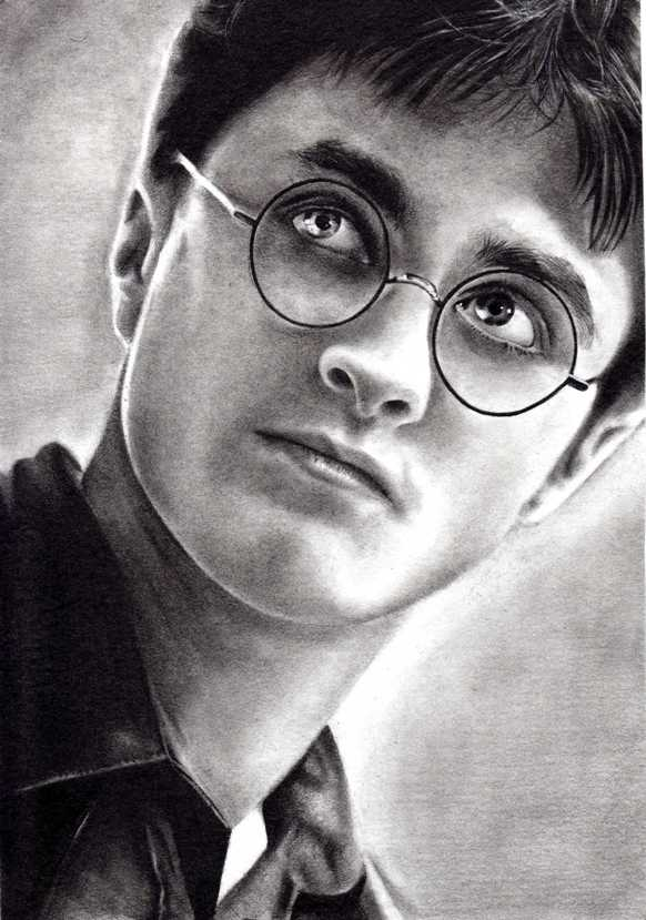 Harry Potter - the boy who lived by Shine Chacko